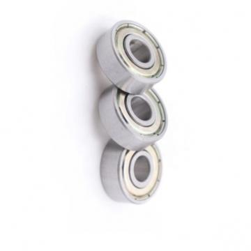 Nzsb Bearing 28BCS15 28X72X18 608z 6002 6003 6004 16004 6056 6309 539860. R20.28 Bearing