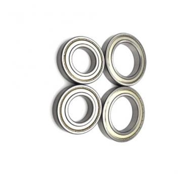 Self-Aligning Roller Bearing 22313 E1 C3 Spherical Bearing of High Speed