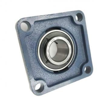 SKF NSK Timken Koyo NTN Cylindrical Roller Bearing Nu244 Nu248 Nu252 Ecm Ecma Ma /C3 C4 Nu207 Nu208 Nu209 Nu210 Nu211 Ecp Ecj Ecm /C3